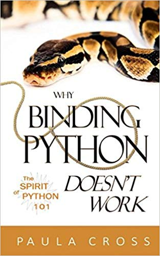 Why Binding Python Doesn't Work