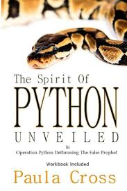 The Spirit of Python Unveiled